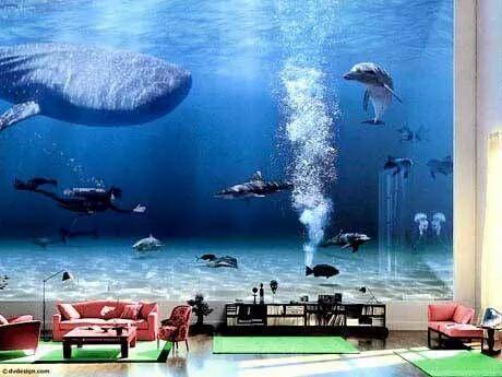hoax_Gates_aquarium