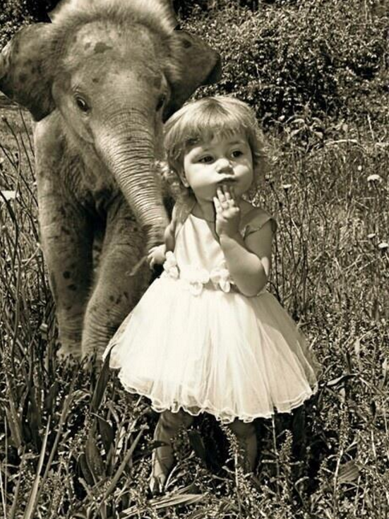 girl-elephant-fake