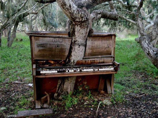 piano-tree-1