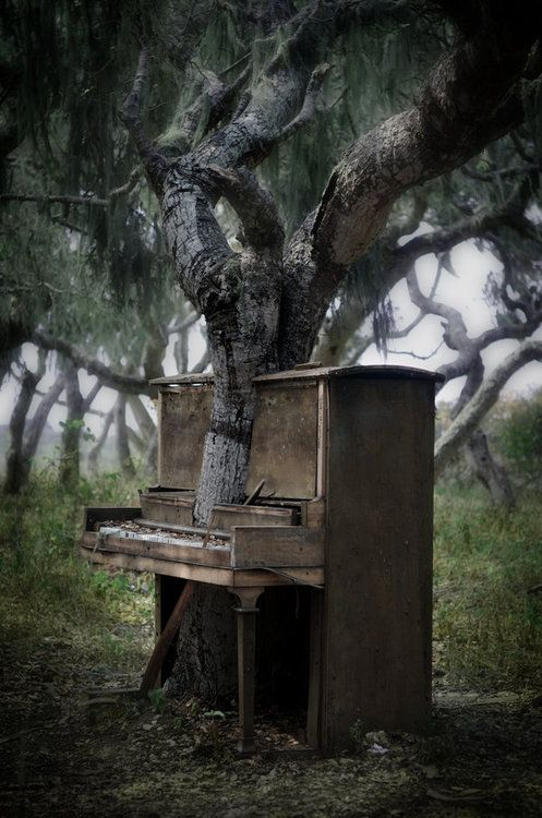 piano-tree-2