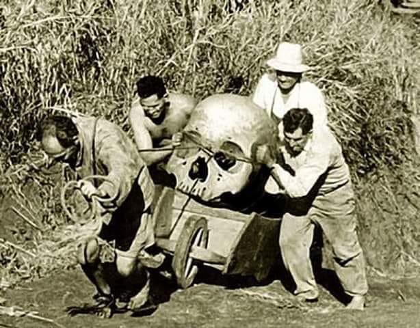 Image result for giant skeletons